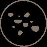 Inna Organic Icon-dull-skin